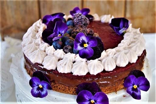 Acai-Beeren-Torte1